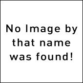Festivales 2019